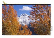 Trees In Autumn, Colorado, Usa Carry-all Pouch