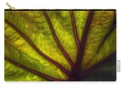 Tributaries Carry-all Pouch by Debra and Dave Vanderlaan