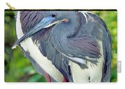 Tricolor Heron Adults In Breeding Carry-all Pouch