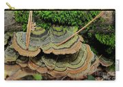Tricolor Turkeytail Carry-all Pouch