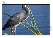 Tricolored Heron At The Pond Carry-all Pouch