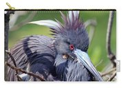 Tricolored Heron Female Incubating Eggs Carry-all Pouch