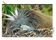 Tricolored Heron Incubating Eggs Carry-all Pouch