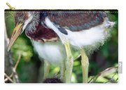 Tricolored Heron Nestlings Carry-all Pouch