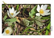 Trio Of Bloodroot Flowers Carry-all Pouch