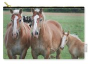 Trio Of Horses 2 Carry-all Pouch