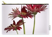 Trio Of Red Gerbera Daisys Carry-all Pouch