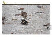Trio Of Shore Birds Carry-all Pouch