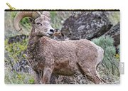 Wild Bighorn Carry-all Pouch