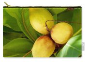 Tropical Almond Carry-all Pouch