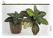 Tropical Houseplant Carry-all Pouch