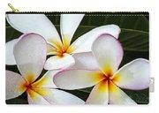 Tropical Maui Plumeria Carry-all Pouch