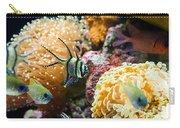 Tropical Wonderland - Banggai Cardinalfish Carry-all Pouch
