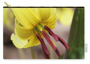 Trout Lily Or Dog-toothed Violet Carry-all Pouch