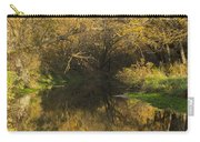 Trout Run Creek Fall 2 Carry-all Pouch