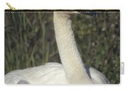 Trumpeter Swan On Nest With Chicks Carry-all Pouch by Michael Quinton