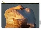 Trumpeter Swan On Swan Lake Carry-all Pouch