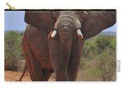 Tsavo Elephant Carry-all Pouch