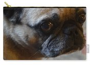 Tuffy 3 Carry-all Pouch