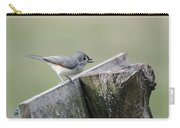 Tufted Titmouse With Seed Carry-all Pouch