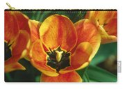 Tulip 2 Carry-all Pouch