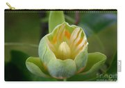 Tulip Tree Bloom Carry-all Pouch
