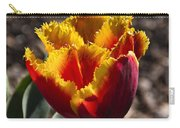 Tulips At Dallas Arboretum V73 Carry-all Pouch
