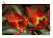 Tulips On Fire Carry-all Pouch