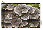 Turkey Tail Bracket Fungi -  Trametes Versicolor Carry-all Pouch