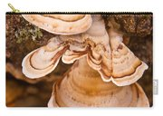 Turkey Tail Fungus 5 Carry-all Pouch