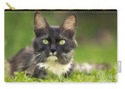 Turkish Angora Cat Carry-all Pouch
