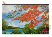 Turtle Bay Virgen Islands Carry-all Pouch