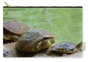 Turtle Ninjas Carry-all Pouch