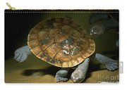 Turtles Float Carry-all Pouch