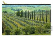 Tuscan Panoramic 3 Carry-all Pouch