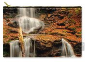Tuscarora Falls - Ricketts Glen Carry-all Pouch