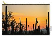 Twilight After Sunset Sonoran Desert Carry-all Pouch