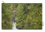 Twin Falls Cascade II Carry-all Pouch