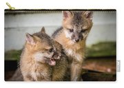 Twin Fox Kits Carry-all Pouch