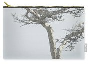 Twisted Tree 2 Carry-all Pouch