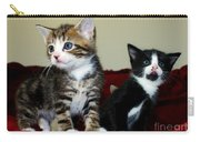Two Adorable Kittens Carry-all Pouch
