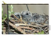 Two Baby Mourning Doves Carry-all Pouch