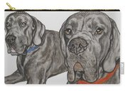 Two Cool Danes Carry-all Pouch