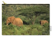 Two Elephants Walking Through The Grass Carry-all Pouch