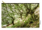 two little brothers Chasing Fairies in theBeech Forest on a summer day Carry-all Pouch