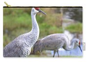 Two Pretty Sandhills Carry-all Pouch