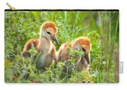 Two Sandhill Crane Chicks Carry-all Pouch