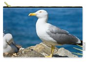 Two Seagull Carry-all Pouch