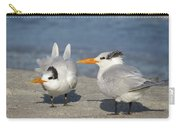 Two Terns Watching Carry-all Pouch