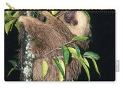 Two-toed Sloth Choloepus Didactylus Carry-all Pouch